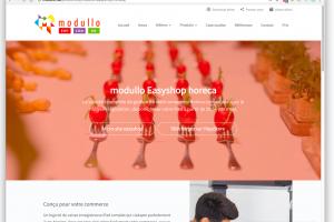 modullo website